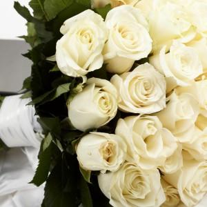 Белых роз