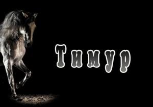 Имя Тимур характер