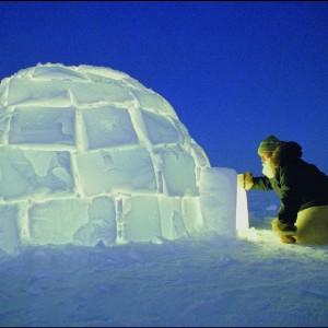 Строить ледяной дом или хижину во сне