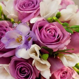 Цветы есть сонник