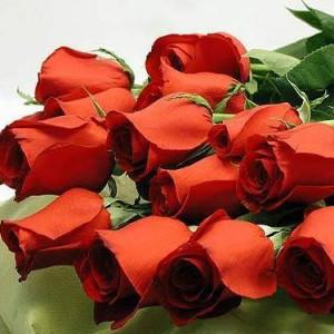 Приснились цветы живые розы купить искусственные цветы подснежники оптом