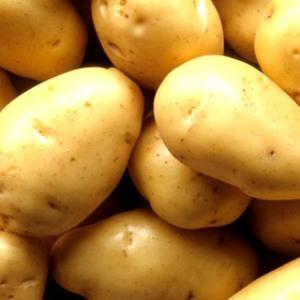 К чему снится поле с картошкой
