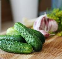 Обсудим к чему снятся свежие большие зеленые огурцы – каково мнение сонников о таких снах?