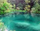 Красивое озерцо в лесу – что предвещает