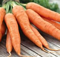 Узнаем, к чему снится морковка. Значение сна из достоверных источников