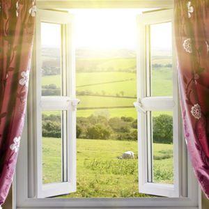 скачать торрент открытое окно