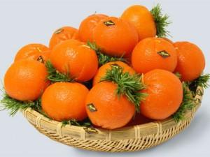 korzina s mandarinami 300x225 - Рассказываем, к чему снятся мандарины. Толкование по соннику в зависимости от деталей