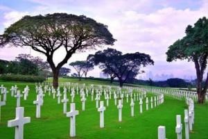 памятники и могилы сонник