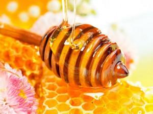 К чему снится собирать мед из сот