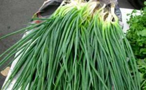 сонник чистить перья зеленого лука