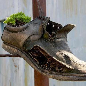 Что значит потерять обувку во сне по Миллеру