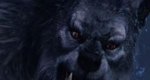 Если привиделись оборотни – волки