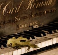 Обсудим чего ждать от судьбы сновидцу, если ему приснился рояль. Рассмотрим все нюансы.
