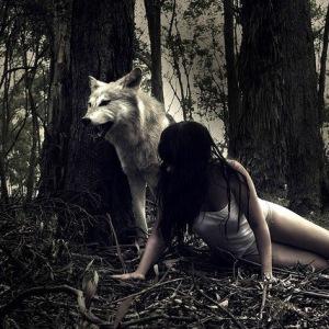 К чему видеть оборотней и вампиров