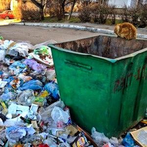 Увидеть мусор на полу – к чему это