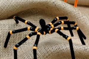 паук на мешке
