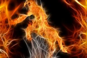 огонь для мести