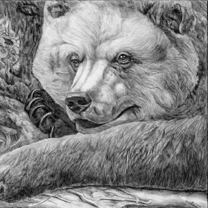 Значение Чертога Медведя