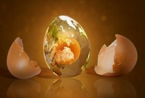 узнать есть ли приворот на муже с помощью яйца
