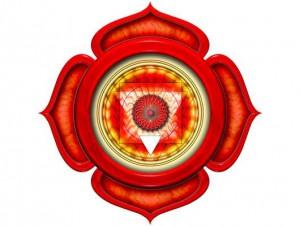 Муладхара чакра: за что отвечает? Раскрытие при помощи упражнений