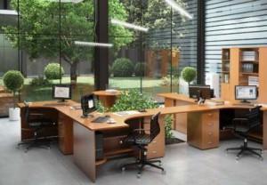 kabinet po fen shuy 300x208 - Расстановка мебели по фен шуй: правила и особенности