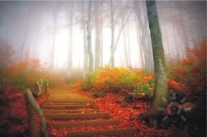 ритуалы в день осеннего равноденствия